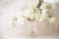 so dreamy! Would be a beautiful bridal bouquet Rose Wedding, Wedding Flowers, Dream Wedding, Traditional Roses, Good Marriage, Shades Of White, Favim, Flower Fashion, White Roses