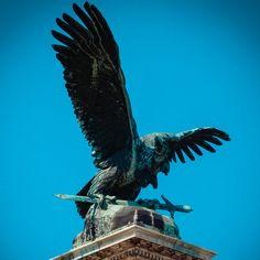"""Welcher Vogel ist das nationale Symbol von Ungarn? Turul Der Turul ist ein Fabelwesen aus dem ungarischen und türkischen Mythenkreis. Der Vogel hat Ähnlichkeiten mit einem Adler und mit einem Falken. Der Turul hat bis heute eine symbolische Bedeutung für die Ungarn: er weist auf die Ursprünge, auf den """"Urvater"""" der Ungarn hin. Er hält oft ein Schwert in seinen Fängen."""