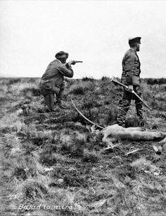 Les indiens ont été massacrés lors de la conquête du désert par l'armée et par des chasseurs de prime afin de laisser de la place aux éleveurs de moutons de Patagonie. Photo extraite du livre d'Anne Chapman (la Fin d'un Monde) : à télécharger ici   http://www.memoriachilenaparaciegos.cl/archivos2/pdfs/MC0043450.pdf