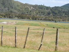 Taken out the window while as a passenger driving through Tairua -- Coromandel -- New Zealand -- 23rd January 2014