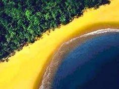 Cores do Brasil!