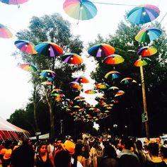 Colourful umbrellas over our heads: they didn't much protect us from the rain but they look amazing. #atmosphere