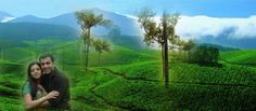 Places to Visit in Munnar  Nestled in the state of Kerala, Munnar is a hearth-throbbing hill station that spellbound travelers with the very first look. The lush green hill station houses pristine and natural environs that make it one of the most illustrious tourist interests in the God's own country.