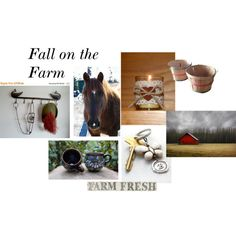 Loving the Farm by gail-brigham on Polyvore featuring interior, interiors, interior design, home, home decor, interior decorating, WALL and Pier 1 Imports