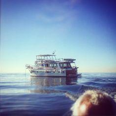 Good morning #mallorca #igers #igersmallorca #igersbalears #teaktock #yachting #superyacht #christmas #palmayachteye #boat #refit #yachtmanagement http://teaktock.es