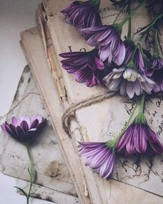 Wallpaper Iphone Vintage Flowers Products New Ideas Cute Backgrounds, Cute Wallpapers, Wallpaper Backgrounds, Iphone Wallpaper, Book Aesthetic, Flower Aesthetic, Purple Aesthetic, Photos Amoureux, Doodle Drawing