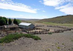 Desde 2010, investigadores del INTA analizan el impacto de las altas temperaturas registradas en Chubut y determinan que los valores se incrementaron en el 75 % de las estaciones. Esto afecta el crecimiento de los forrajes y repercute en las cargas g