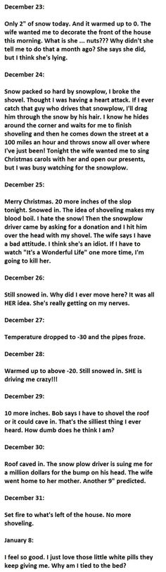 The Best Diary Entry Ever. Who Said Shoveling Snow Was Easy?