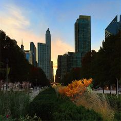 It was such a calm, cool and pretty sunset yesterday .. glow of yellow was so fascinating :) #Sunset #Colors #Chicago #Downtown #MillenniumPark #Pretty #SweetNovember #Pretty #Autumn