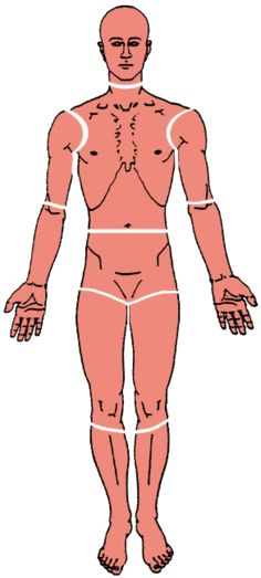 The Trigger Point & Referred Pain Guide