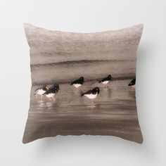 Oyster Catchers Throw Pillow by F Photography and Digital Art - $20.00