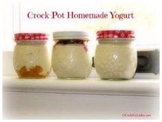 Crock-Pot Homemade Yogurt by jolene