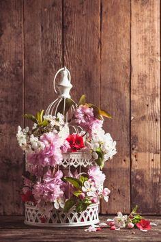 Birdcage flower arra