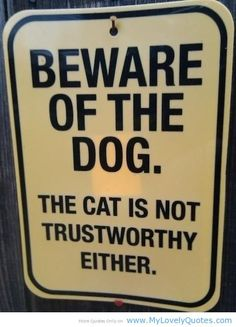 funny dog and cat quotes - Google Search