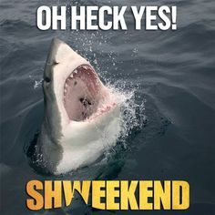 SHWEEKEND starts August 29 at 8/7c!