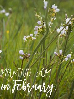 making joy in februa