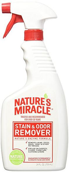 Nature's Miracle Stain and Odor Remover oz Spray- 2 Pack) - Eliminates stains and odors without harsh chemicals Leaves behind a fresh citrus scent Convenient size for using in multiple areas and quick application Cleaning Pet Urine, Cleaning Tips, Urine Remover, Getting Rid Of Mice, Pee Smell, Nature's Miracle, Dog Dental Care, Dog Food Storage, Dog Feeding