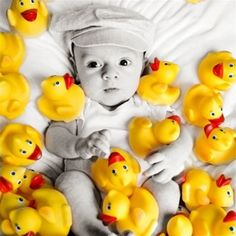 Duck of the Month Club - great gift idea for my rubber duck obsessed big!