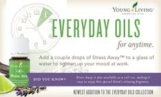 Everyday Oils Essential Oil Collection | Young Living Essential Oils