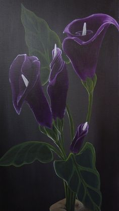 Hand full of sunshine-acrylic painting of hand holding purple calla lilies with green stems on black background by Artbygerardprovost on Etsy