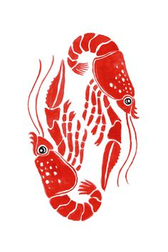 How to Draw A Fish Tutorial - Easy Drawings & Sketches Cute Cartoon Fish Lobster Drawing, Lobster Art, Lobster Tattoo, Crab Illustration, Ink Illustrations, Cartoon Fish, Cartoon Dolphin, Fish Art, Crab Art