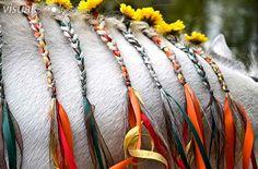 Horse mane Flower braids with ribbon
