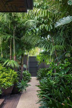 Ein tropischer Garten im Herzen von Melbourne Behind a steel black gate lies an unexpected tropical garden in the heart of Melbourne. Lush palm tree canopies flank the garden path