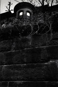 rgogopin: Med_pittsburgh-1-copie-jpg    Old Mansion, Window Reflections, 1955-56. Photographie par W. Eugene Smith. Collection Center for Creative Photography, University of Arizona © The Heirs of W. Eugene Smith