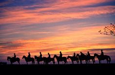 Horse back-riding at the East Plains or Llanos Orientales Costa, Colombia Travel, Horse Love, Belleza Natural, Fauna, Latin America, Horseback Riding, Sky, Mountains