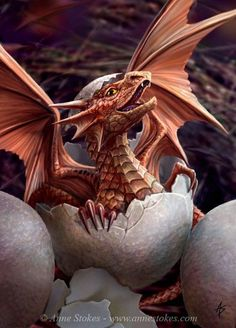 "First Flap by Anne Stokes. ""Anne Stokes- Artist"" First Flap van Anne Stokes. Anne Stokes, Dragon Egg, Red Dragon, Dragon Born, White Dragon, Magical Creatures, Fantasy Creatures, Dragon's Lair, Dragon Artwork"