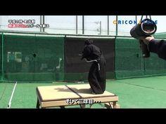 Video: Man slices a 130 MPH baseball in half with a Samurai sword - Yahoo Sports