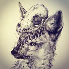 Fox skull (Instagram: pauljacksonlives)