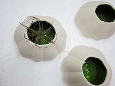 Ceramic Wall Barnacles by Knowhow Shop | Apartment Therapy