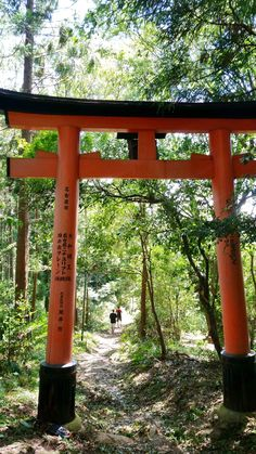 things to do in japan. backpacking east asia travel tips. places to visit japan, in the world bucket list. Kyoto Travel Guide, Travel Tips, Asia Travel, Japan Travel, Kyoto Itinerary, Nijo Castle, Winter In Japan, Photo Walk, Visit Japan