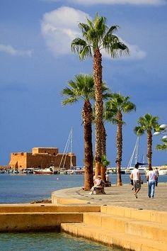 Paphos Harbour, Cyprus. Love the palm trees. You can see the old Fort in the background.