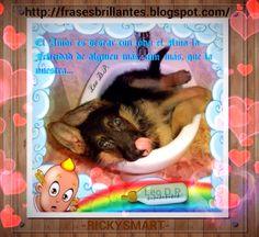 Frases Brillantes - Bright Phrases: El Amor es desear con toda el Alma la Felicidad de...