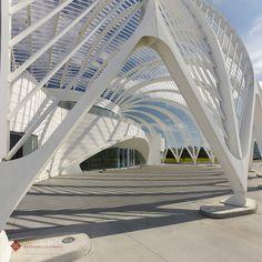 Santiago Calatrava tasarımı Florida Polytechnic Üniversitesi tamamlandı. Açılış 25 Ağustos'ta yapılacak.