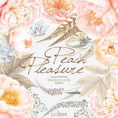 Aquarelle des cliparts pêche pivoines Roses Fleurs par ReachDreams