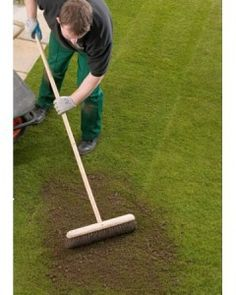 http://grassseed.co.nf/top-dressing-lawn-guide/