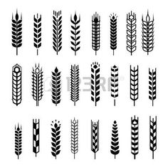 Wheat ear icon set, leaves icons, graphic design elements, black isolated on white background, illustration. Wheat Tattoo, Plant Icon, Ui Patterns, Desenho Tattoo, Silhouette Vector, Free Vector Art, Vector Clipart, Bottle Design, Branding