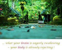 ... what your #brain is eagerly swallowing ~ your #body is already rejecting !