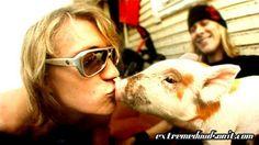 Dudesons Jukka kissing pig :)