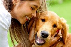 #Los perros tienen memoria episódica y se acuerdan de lo que hacen sus dueños - ElEspectador.com: ElEspectador.com Los perros tienen…