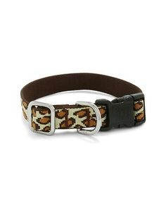 Chico's Dog Collar  #chicossweeps