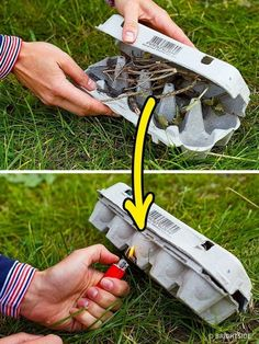 11 Wilderness Survival Tips - Place dry branches in an egg carton to light a fire quickly.