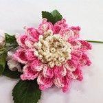 Flor Bromélia