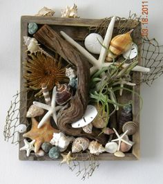 Wall box made from a barnwood frame. Then hot glued on various shells, driftwood and fish netting, and air plant in the center.