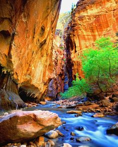 Zion:  one of the most amazing experiences of my life included this very place. I want to go back there soon.