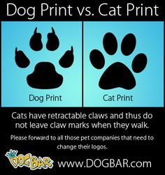 This is one of the reasons why, as the Creative Director for a luxury pet boutique, I have a strict NO PAW PRINT policy when it comes to the art direction. It's also kind of lame and overused. (Please, dear reader, don't confuse my conviction with sounding dickish). -Mathew
