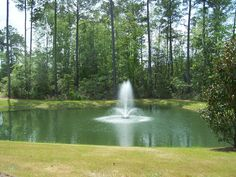 Pond with Fountain Make your yard interesting with the use of a water feature